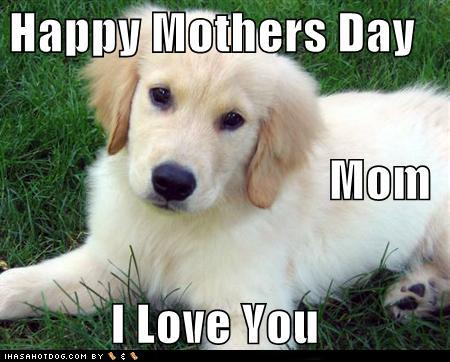 cute i love you mom quotes. Mother#39;s day | Leave a