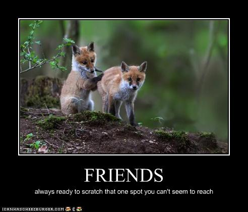 Friends: Always ready to scratch that one spot you can't seem to reach
