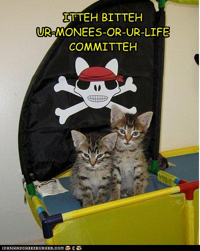 Pirate Kittens!