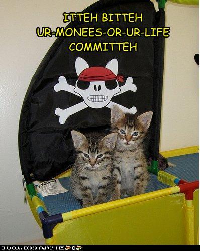 Pirate Kittens!
